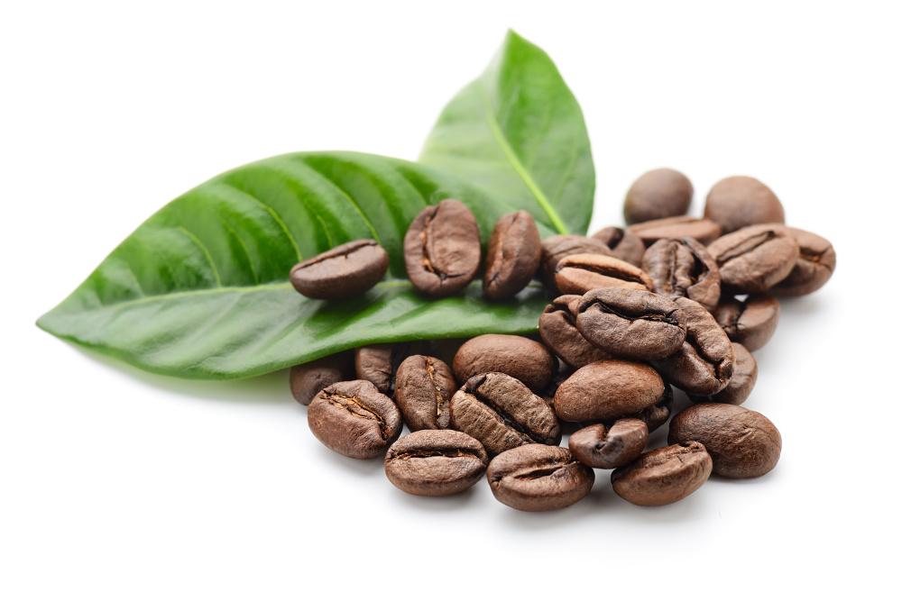 Káva prodlužuje život, zjistila rozsáhlá studie